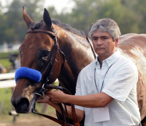 Triple Crown winner American Pharoah, led off the track after losing the Travers Stakes in Saratoga Springs, N.Y., last Saturday, won't be retiring just yet. The horse will race in the Breeders' Cup Classic next month.
