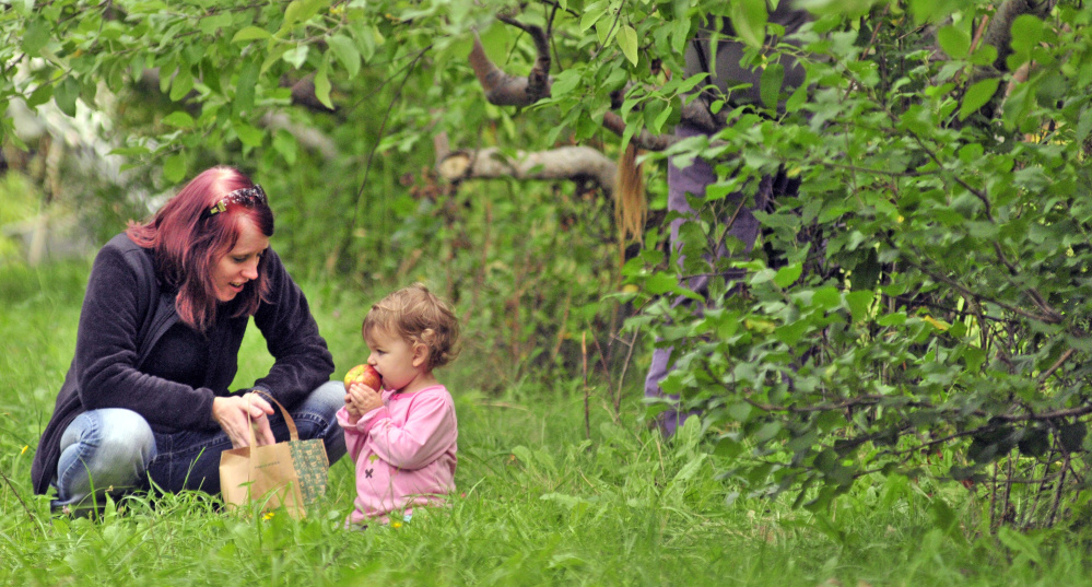 Alex Brokordt chats with Aravis Epley as the 2-year old's mother, Christina Epley, picks more apples Tuesday at Lakeside Orchards in Manchester.