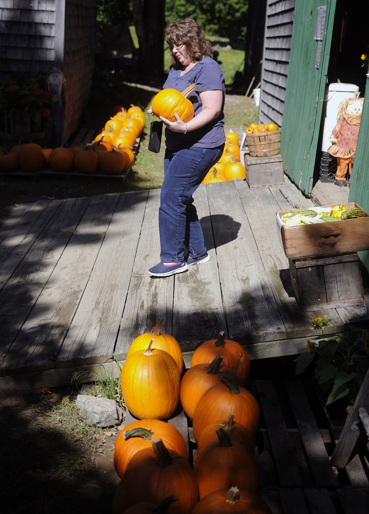 "Sue Hinkley, of Pittston, carries a pumpkin she bought Sunday at Bailey's Orchard in Whitefield. The 60-acre farm is open for picking, according to owner Kay Bailey, until ""all the apples are gone."" Hinkley said she selected the gourd after harvesting a bag of apples on her annual trip to the orchard with her husband, Morris."