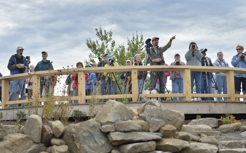 Birders look out from a platform atop Mount Agamenticus in York after taking in a class led by biologist Katrina Felton. Despite less than perfect weather – breezy is best – the group saw three turkey vultures, a few osprey, a Cooper's hawk, a kestrel and two marlins in the span of an hour.