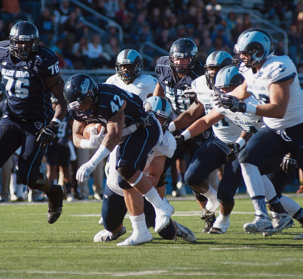Maine player Darian Davis-Ray (42) strains out a few more yards on a carry  in the first half against Rhode Island in Orono on Saturday. Michael C. York/Special to the Press Herald