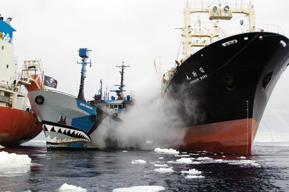 The Sea Shepherd ship Bob Barker, center, takes action against a whaling fleet, including the Japanese ship Nisshin Maru, right, in a photo included in the cookbook.