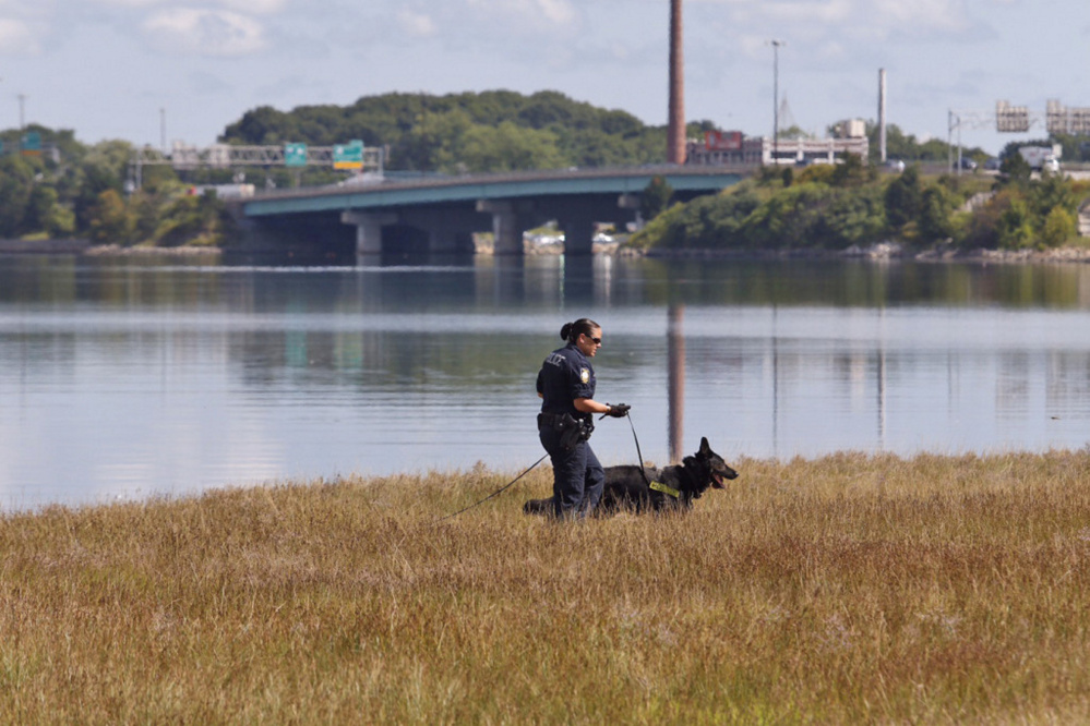 Portland police Officer Michelle Cole and search dog Kaine conduct a sweep for evidence near the Back Cove Trail in August following a reported sexual assault there. The woman who reported the crime has pleaded not guilty to filing a false report.