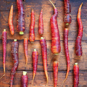 Colorful carrots at the Scarborough Farmers Market by @asweetlifedesigned