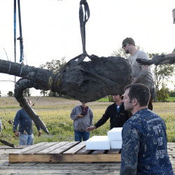 A piece of a tusk, lower left, snaps off as crews transfer the remains of a woolly mammoth found on a Michigan farm to a trailer for transport. Melanie Maxwell/The Ann Arbor News via AP