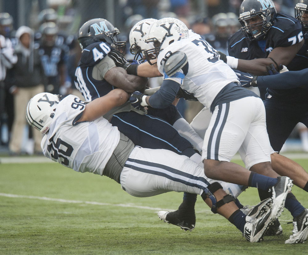 Nigel Beckford of the University of Maine is hauled down by Copache Tyler, left, and Darius Manora of Yale during the first half of Yale's 21-10 victory at Orono. Yale is 8-0-1 all-time against the Black Bears.