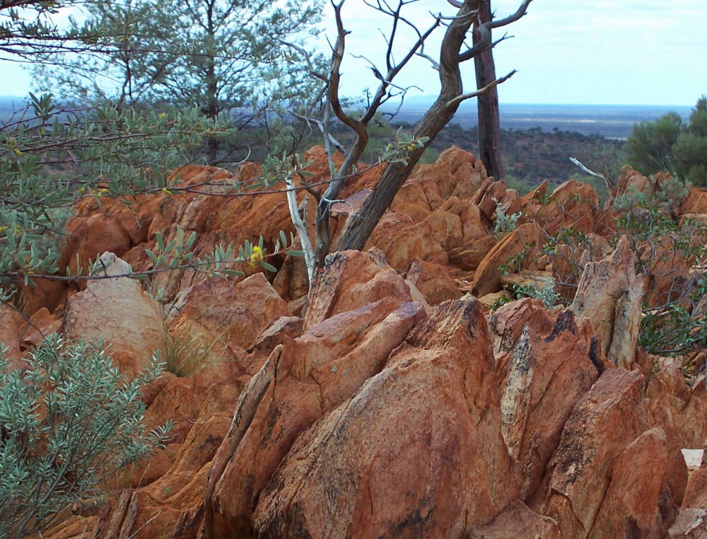 A photo provided by the Proceedings of the National Academy of Sciences shows fossil-like rock found in Australia containing hints of life from 4.1 billion years ago.