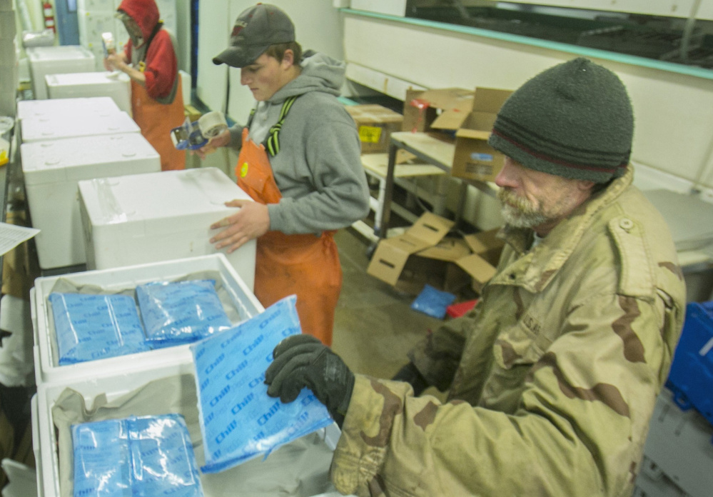 At The Lobster Co. in Arundel last December, Dan Warner places a cold pack on top of live lobsters in a foam container to be shipped to China. Maine exports to China, driven largely by lobsters, pulp and paper and computers, have decreased over the past three years. Exports through August are up incrementally.