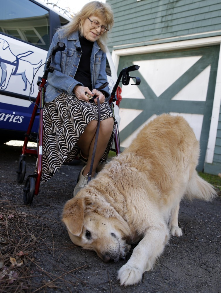 Audrey Stone holds the leash of her guide dog, Figo, as he rolls in the dirt at her house in Brewster, N.Y.
