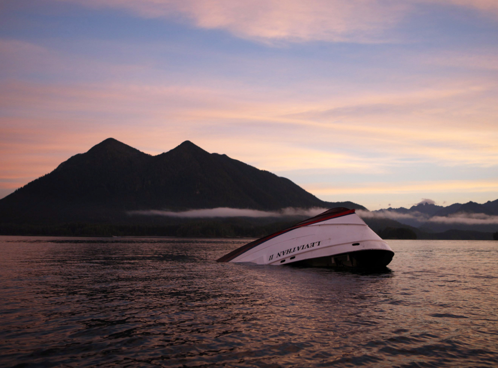 The Leviathan II, a whale-watching boat that capsized Sunday off Vancouver Island, apparently sank in calm weather. A father and his teenaged son are among those who died. A fisherman said a female survivor told him a wave struck the boat.