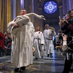 OCT. 4: A swan is carried down the nave of the cathedral during the Procession of the Animals at the annual Feast of Saint Francis and Blessing of the Animals at The Cathedral of St. John the Divine in the Manhattan.