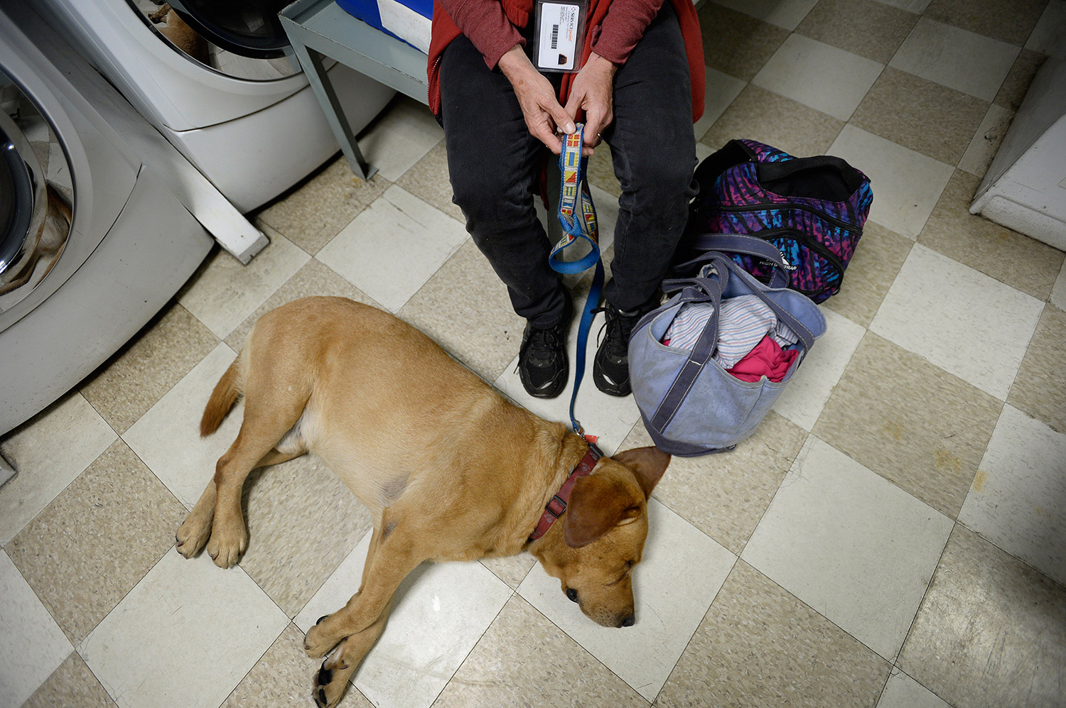 Jane Footer clings to the leash of her dog Timmy after checking in at the Oxford Street Shelter.