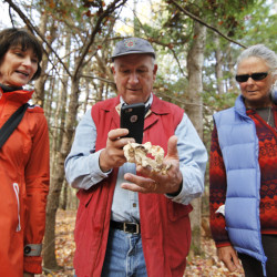 Allyn Lamb photographs a turkey tail mushroom while Norma Lamb, left, of Kennebunkport and Jennie Lord of Moody watch during a mushroom foraging walk led by the Great Works Regional Land Trust at Negutaquet Conservation Area in North Berwick.