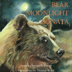 754315_139116-bear-moonlight-sonat