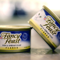 Fancy Feast cat food, fish and shrimp flavor, is a product of Thailand.