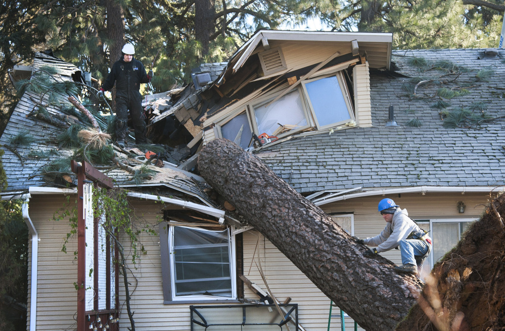 Strong winds cracked trees and left more than 180,000 homes without power near Spokane, Wash., last week.