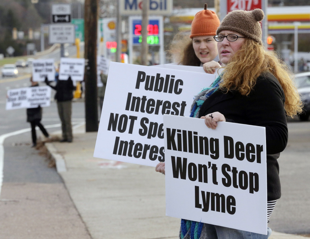 Activists protest a plan to hunt deer in the Blue Hills Reservation in Massachusetts. They would like to reduce deer population by means of contraception or sterilization.