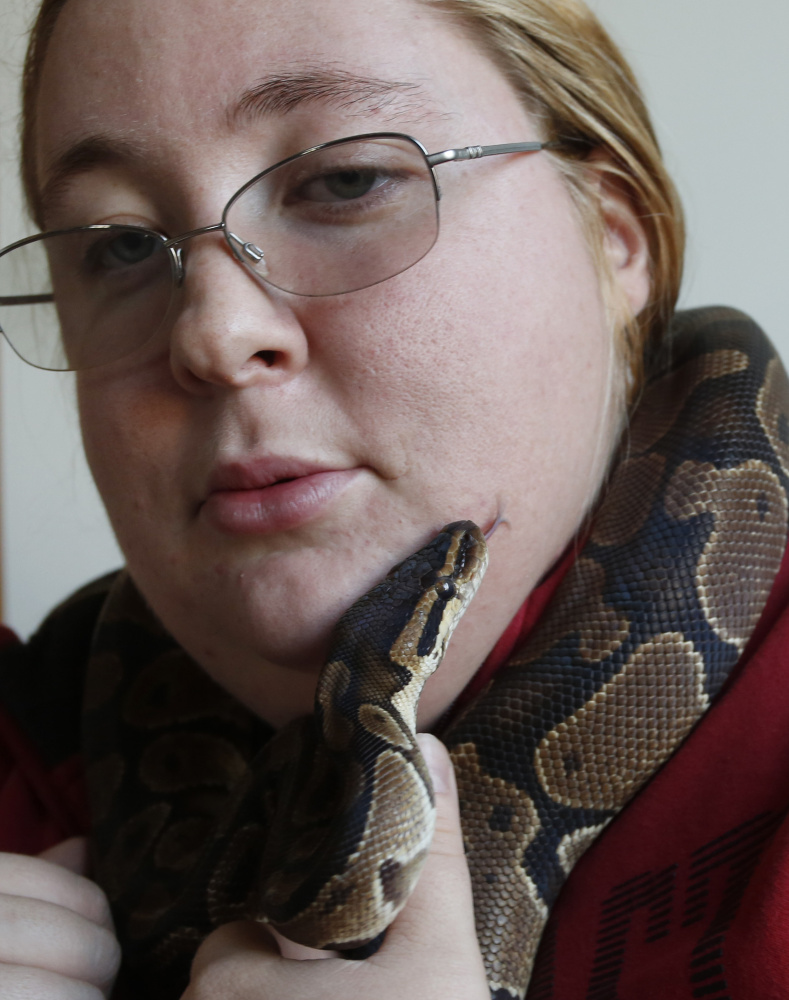 Karrie Herring holds Chuck, a normal ball python, one of many snakes she keeps at her home in Scarborough. Maine wardens confiscated four of her snakes last summer when she lived in an apartment in Biddeford, including a Burmese python that was more than 11 feet long and weighed 80 pounds.