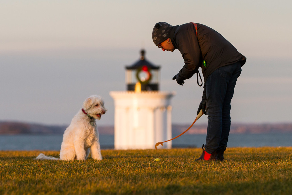 In this 2015 photo, Jac Ouellette of South Portland reaches for a ball while his dog waits to chase it at Bug Light Park. Money Magazine notes South Portland's beautiful vistas in calling the city Maine's best place to live.