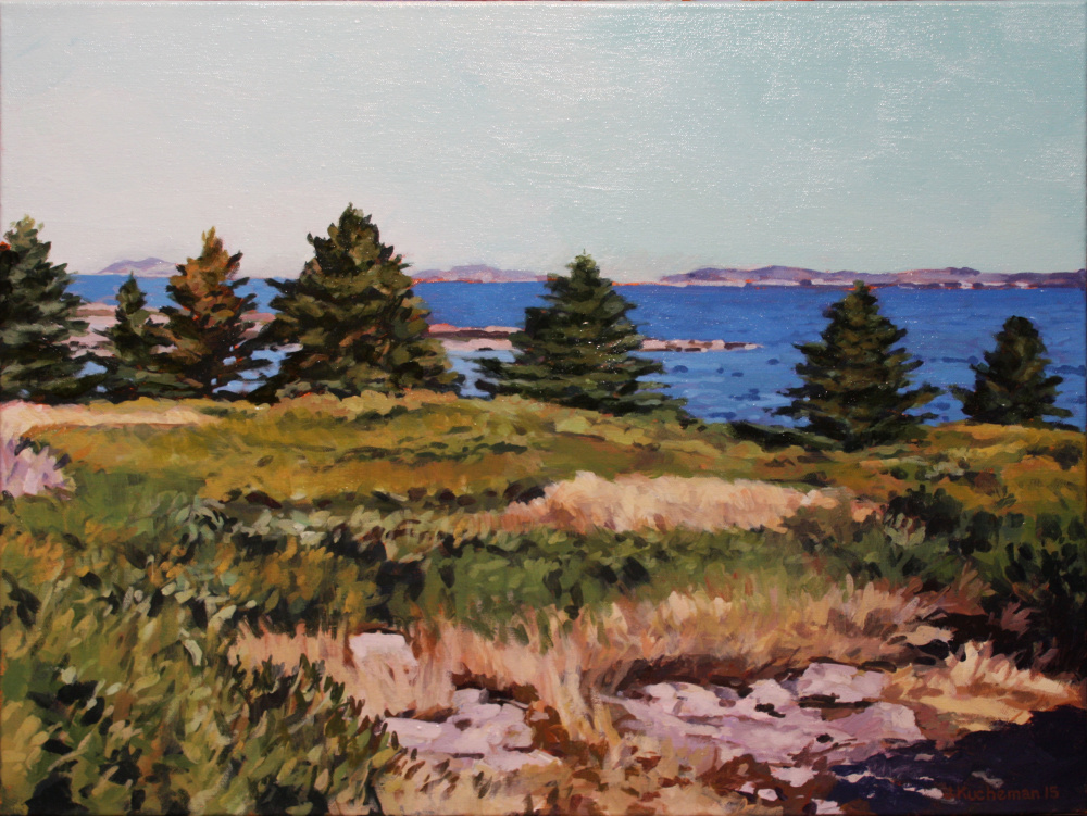 """Isle au Haut from Lane's Island"""