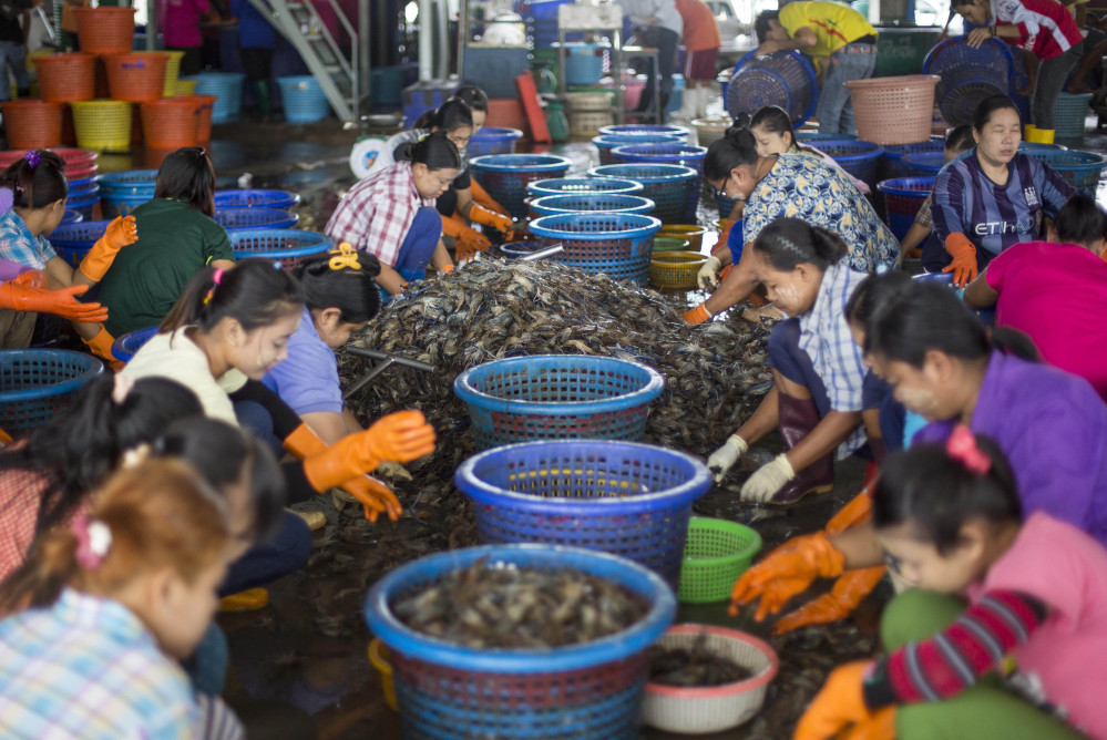 The most popular seafood in the United States, shrimp often is imported from Thailand where The Associated Press found workers treated as virtual slaves, earning low pay for long hours and living in deplorable conditions.