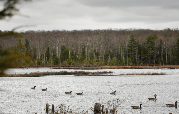A voter-approved conservation plan for Knights Pond in Cumberland was almost sunk by the governor's intransigence. It was rescued by private donors, but other deals were threatened by his meddling.
