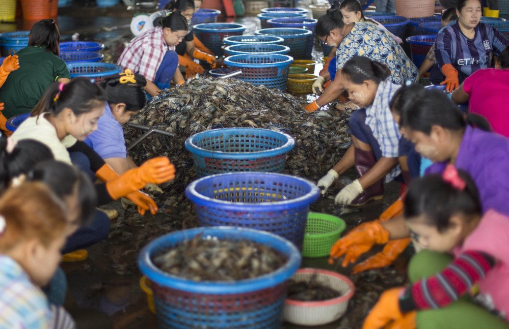 Workers sort shrimp at a seafood market in Mahachai, Thailand. The Asian nation sends nearly half of its supply to the U.S., where it shows up in grocery stores and all-you-can-eat buffets.