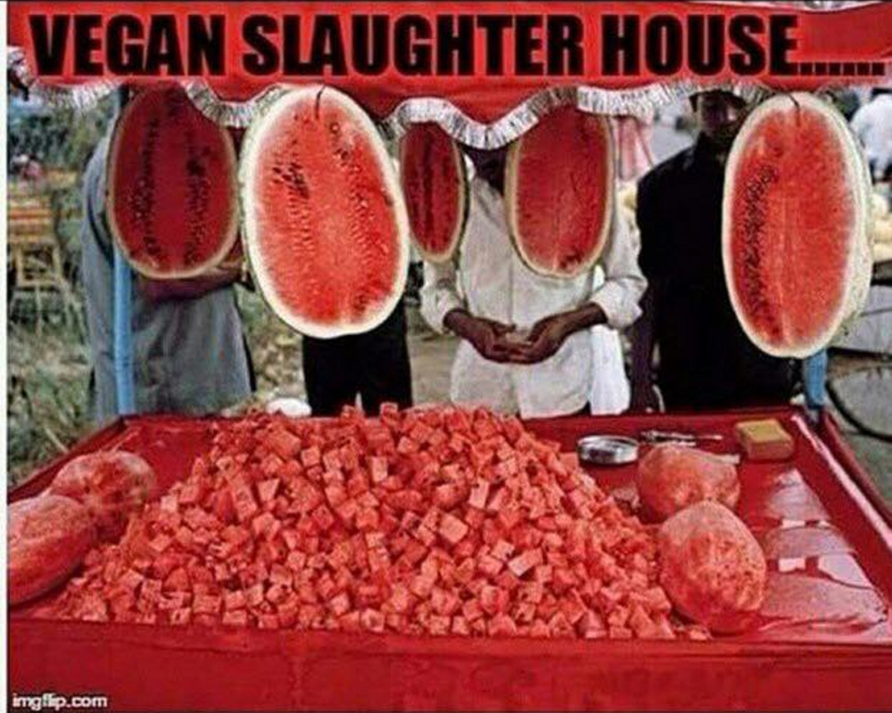 """A meme shared on the Vegan Humor Facebook page of a """"slaughterhouse"""" in an all-veg world."""