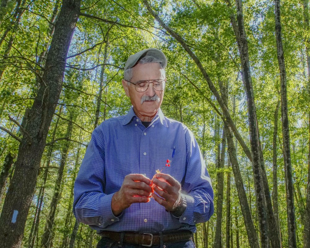 """Biologist Jerry Longcore holds a stem of Canada Mayflower as he stands on part of the land under the supervision of the Orono Land Trust at Piney Knoll in Orono. """"In contrast to what people say, a land trust is a blue-collar organization,"""" said Longcore."""