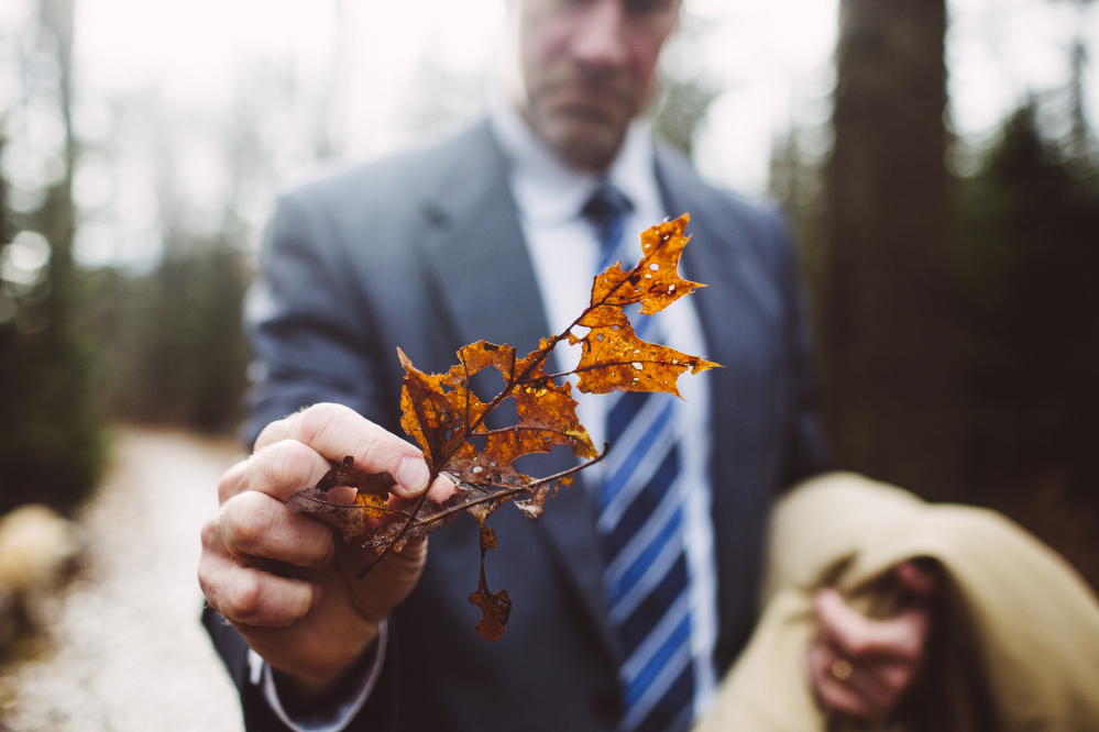 Cape Elizabeth Tree Warden Mike Duddy holds an oak leaf damaged by winter moths in a portion of the woods in Cape Elizabeth along the Greenbelt Trail.