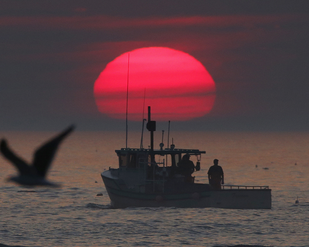 A lobster boat heads out to sea at sunrise off Kennebunkport. Some of the state's lobstermen are staying out on the water later in the year because of the warm winter weather. The result is that lobster is easy to come by at the market.