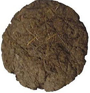 Amazon's retail website for India, called Junglee.com., displays this photo of an 8-inch dung patty that sells for 199 rupees – about $3 – per dozen. Customers rate the product 3.7 out of 5 stars although many reviews are facetious.