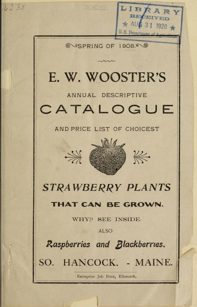 284625-wooster1908