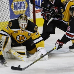 Rob Flick of the Portland Pirates prepares to put the puck past goalie Zane McIntyre of the Providence Bruins during the third period of  the Pirates' 4-3 victory Thursday – the second game of the Red Claws-Pirates doubleheader in Portland. Both teams also will be home Saturday.