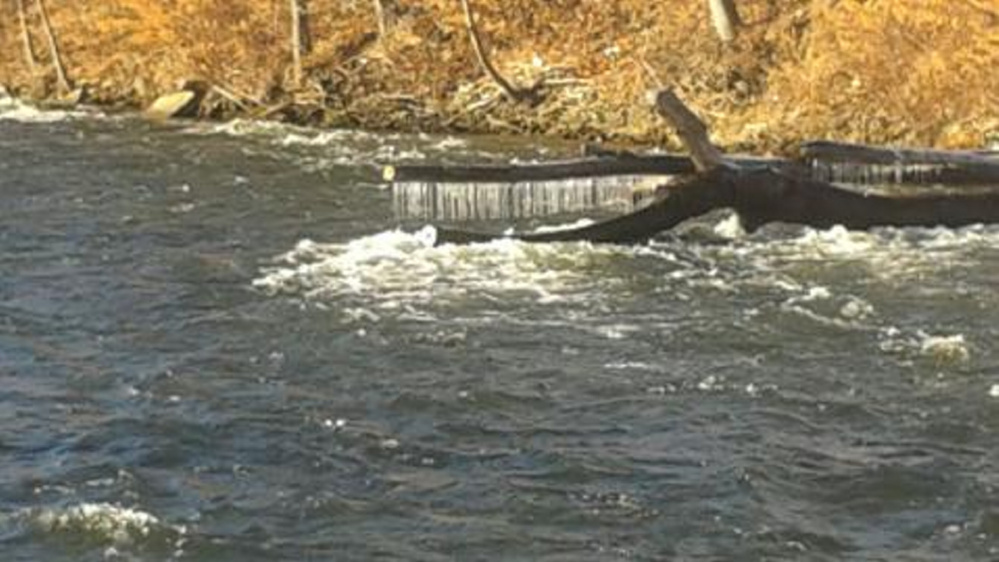Hanging ice makes this log look like a great alligator waiting to snatch something from the river beneath the A-1 Diner in Gardiner. By Drew Masterman of Portland.