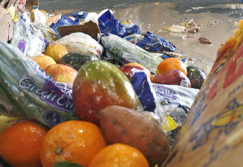 Hundreds of millions of pounds of food go wasted each day in the United States, at a cost measured in the tens of billions of dollars a year.