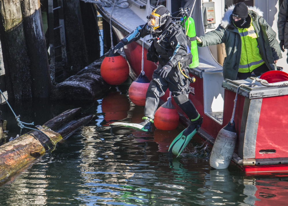 Divers from Portland and South Portland police departments continue their dive search for James Dyer near Union Wharf in Portland on Tuesday.