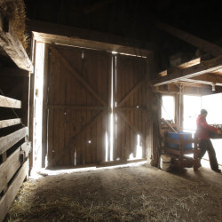 Amanda Provencher hauls a bin of garlic into a barn at King Hill Farm in Penobscot. She and her husband and a former owner crafted a unique ownership transfer.