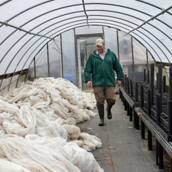 John Mitchell of Heirloom Harvest Community Farm in Westborough, Mass., walks through his greenhouse where he stores cloth crop covers during the winter. Mitchell says he must be 'diligent' about snow removal and repairs at this time of year.