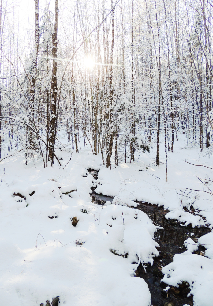 After an unseasonably mild December, winter has arrived in southern and central Maine, and Dmitry Pepper of Whitefield captured the beauty of the season after a recent storm.