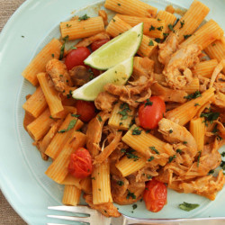 Pasta with shredded chicken