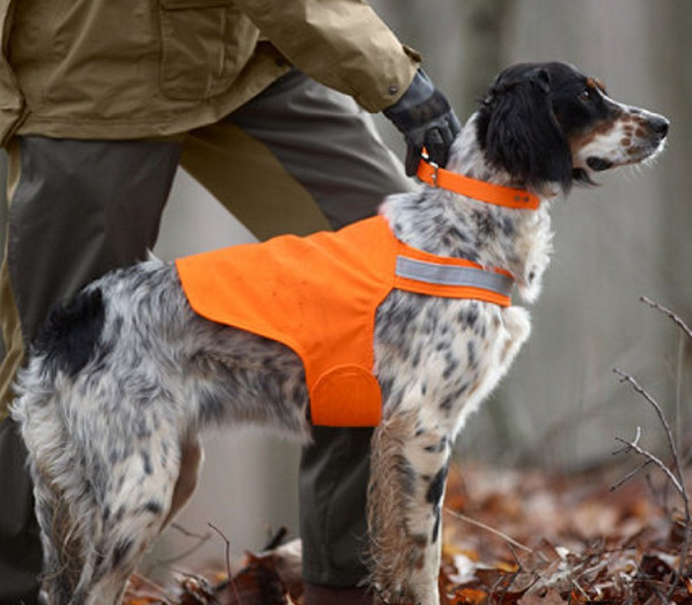 Tick Repelling Safety Dog Vests made by Dog Not Gone Visibility Vests in Skowhegan will be sold on a test basis at Wal-Mart beginning next month.