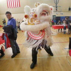 Rodger Wong performs a lion dance in the gymnasium at Westbrook Middle School on Saturday as part of a Chinese New Year celebration sponsored by the Chinese and American Friendship Association of Maine and the Confucius Institute of the University of Southern Maine.