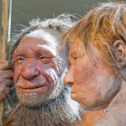 Photo shows reconstructions of a Neanderthal man, left, and woman at the Neanderthal museum in Mettmann, Germany. A study in the journal Science says a person's risk of becoming depressed or hooked on smoking may be influenced by Neanderthal DNA.