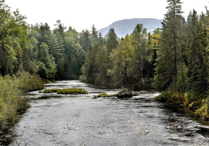 A view of the Seboeis River, which runs into land owned by Elliotsville Plantation Inc. This could be preserved for the enjoyment of future generations, if Maine officials will cooperate with the federal government.