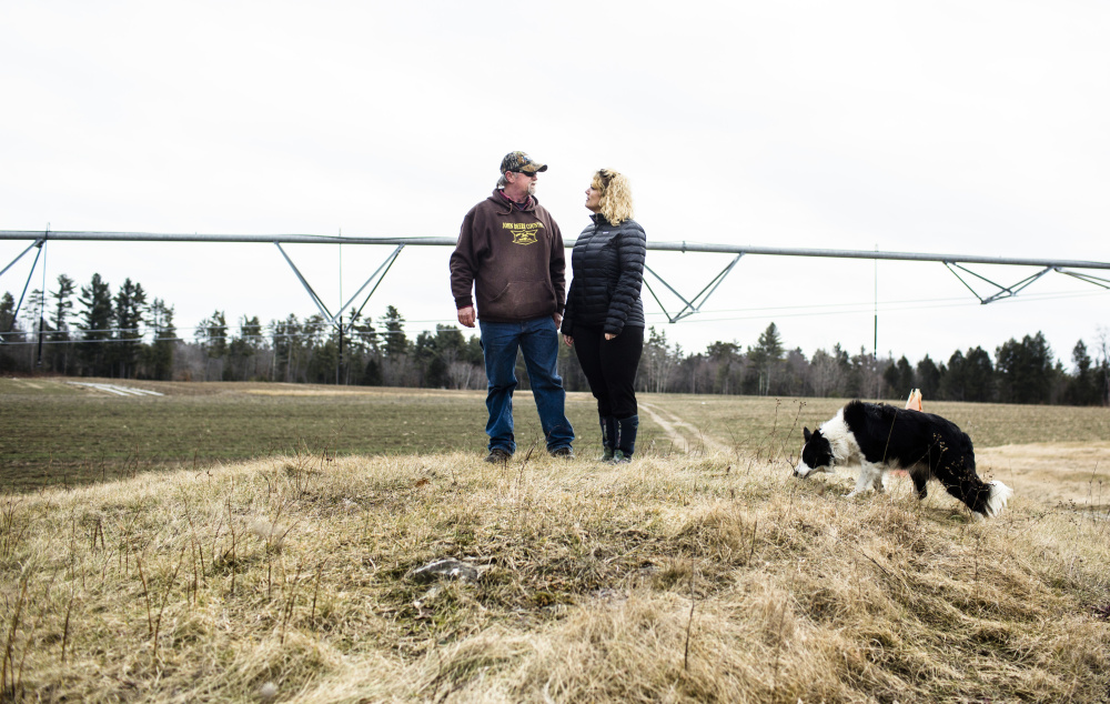 Rick and Stacy Grant, with their dog Chloe on their farm, Grant's Farm, in Saco. Below, their timecard clock that keeps them square with the Department of Labor.