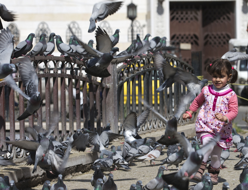 A Syrian girl chases pigeons in Marjeh Square in Damascus on Saturday, as an internationally mandated two-week truce took effect across much of the nation.