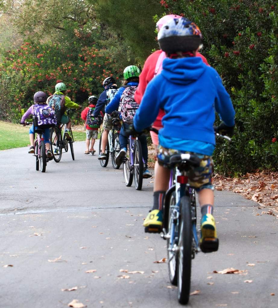 In 2013, 33 percent of students in Davis, California, biked to school, and another 11 percent walked.