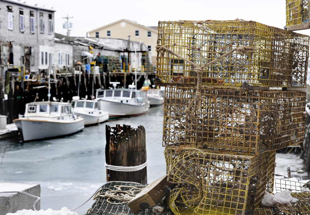 A Canadian expert is being brought in to talk to Maine lobstermen about handling the more delicate soft-shell lobsters – likely to be in abundance this spring – to get them safely from the boat to the docks to customers.