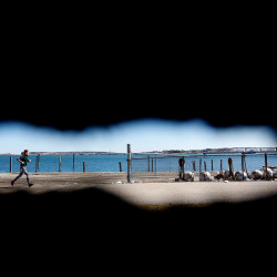A woman jogs on the Eastern Promenade Trail in Portland as seen through a hole in a rusted shipping container.